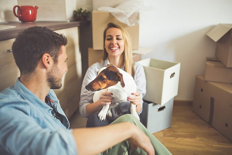 First home buyers getting bigger slice of the pie