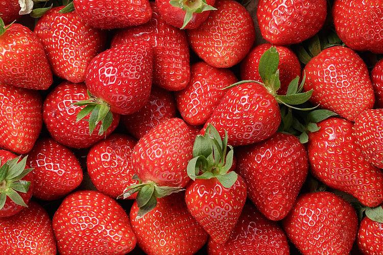 Banks offer fruit farmers a break