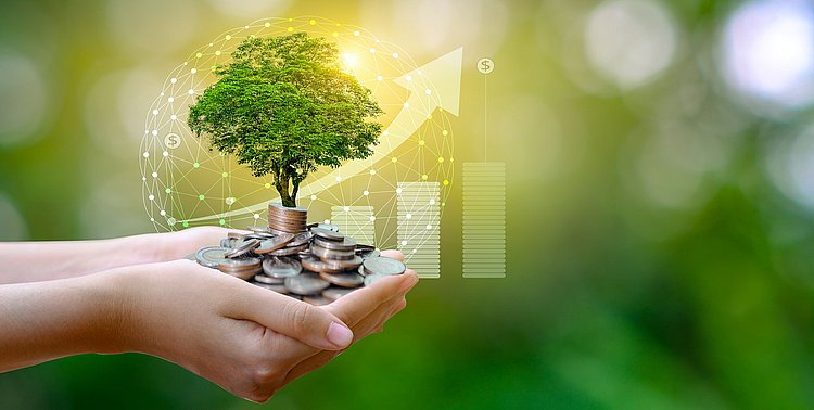 The banks driving sustainable finance in 2020