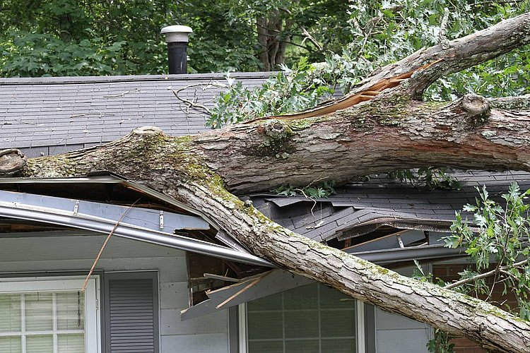 Does home insurance cover natural disasters?